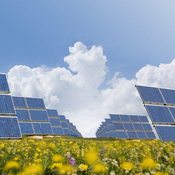 EAG Laboratories의 태양 광 산업 서비스