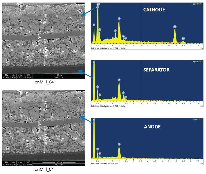 リチウムイオン電池の構造的および化学的キャラクタリゼーションにおけるSEM EDX