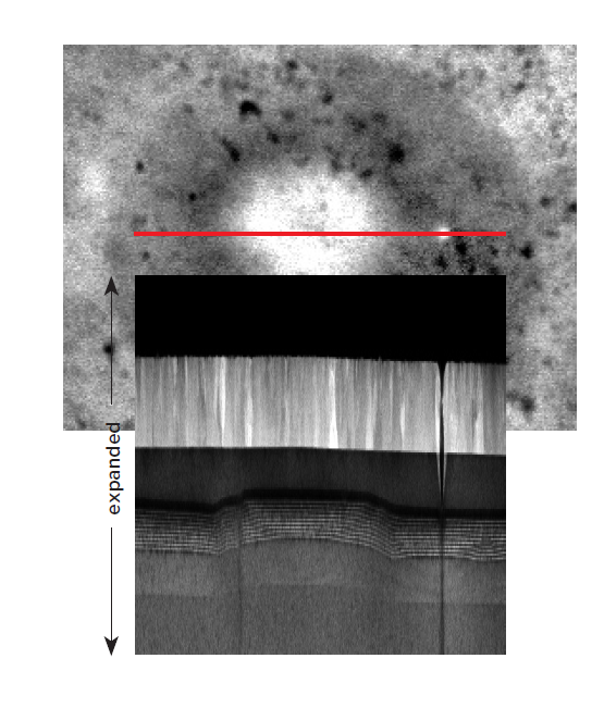 Magnifying the TEM cross-section image vertically reveals a disruption in the quantum well epi-layer growth. The EBIC signal is stronger where the quantum well is in closer proximity to the ITO layer.